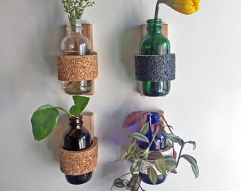 Magnetic Planter | Cork | Flower cuttings | Propagation Station