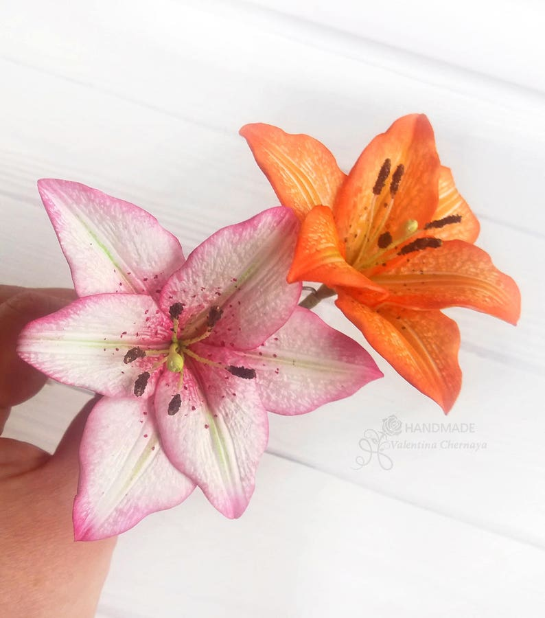Hair Accessories Small Responsible Pk Of 10 Beautiful Orange Frangipani With Orange Bobby Pin Hair Clips