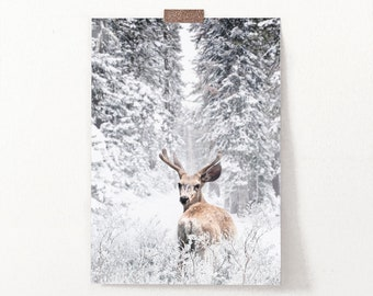 Buck Wild Christmas Deer in the Snowy Pine Tree Forest Scenery Wall Art Print, Large Giclee Reindeer Poster, Snowy Landscape Photography Art