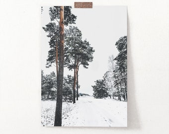Winter Wall Art, Scandinavian Trees Photo Print by Mail, White Snowy Trail with Frozen Pines Photo, Modern Shipped Photography for Decor