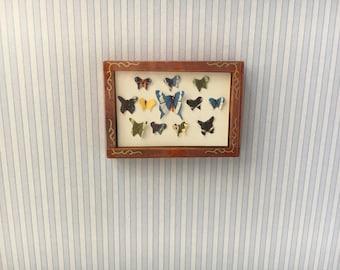 1/12 Miniature Butterfly Box