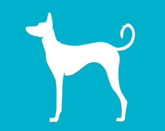 Ibizan Hound Decal