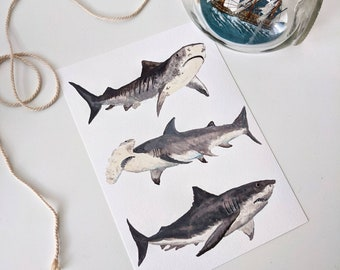 Three sharks A4 illustration Giclée Print
