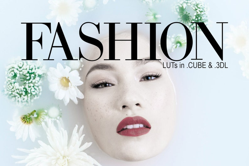 3d LUTs  Fashion pack image 0