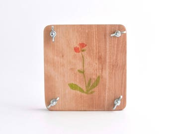 Small Flower Press (hawkweed illustration)