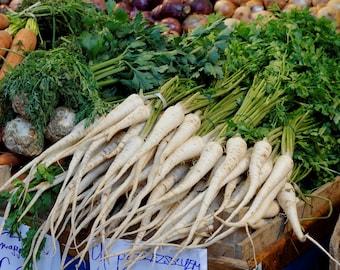 1000 HAMBURG ROOTED PARSLEY Petroselinum Crispum Tuberosum Root Vegetable Seeds