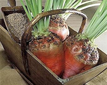 75 Giant Red BEET Mangelwurzel Mangel Mangold Wurzel Mammoth Long Beta Vulgaris Seeds
