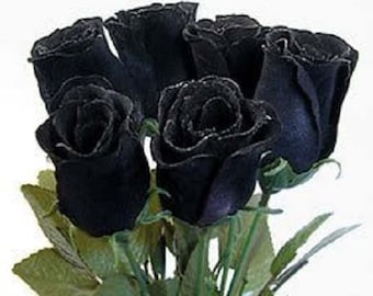 5 BLACK ROSE Rosa Bush Shrub Perennial Flower Seeds *Flat Shipping