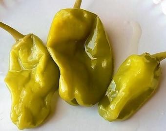 50 GREEK GOLDEN PEPPER Pepperoncini Gold Yellow Capsicum Annuum Vegetable Seeds