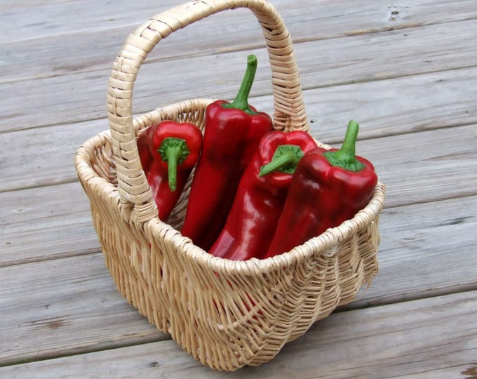 60 RED MARCONI PEPPER Rossa Large Sweet Italian Frying Capsicum Annuum Seeds