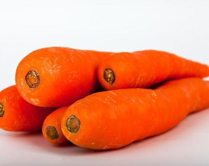 1500 DANVERS CARROT Dark Orange Daucus Carota Vegetable Seeds