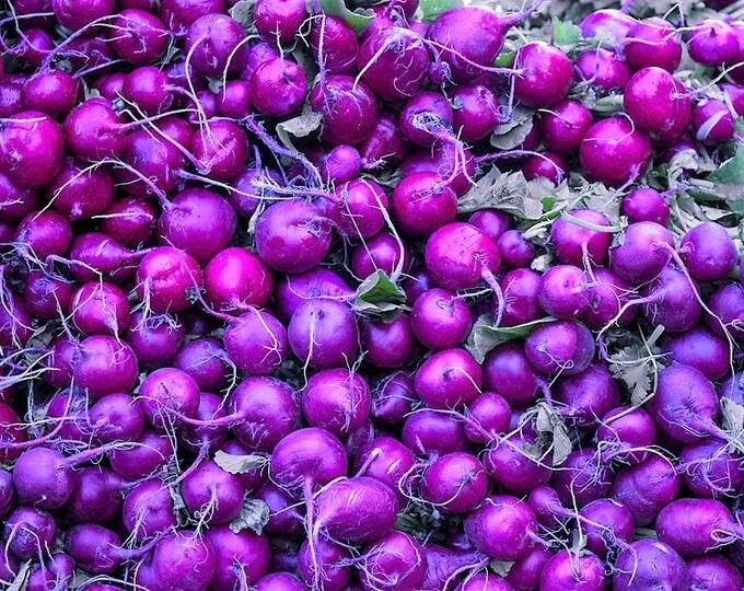 300 PURPLE PLUM RADISH Raphanus Sativus White Flesh Root Vegetable Seeds