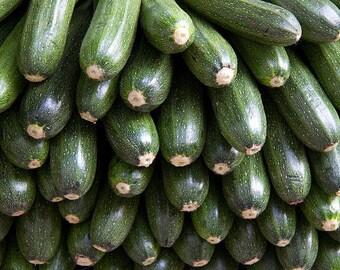 30 GRAY ZUCCHINI Heirloom Summer Bush Squash Cucurbita Pepo Vegetable Seeds