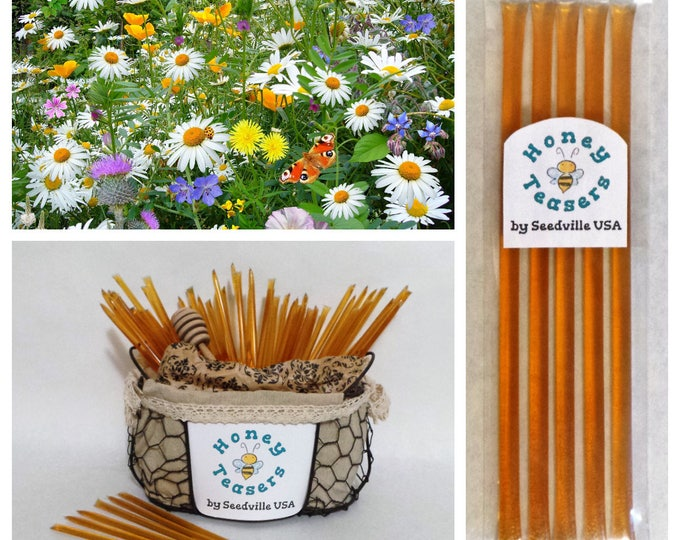 5 Pack WILDFLOWER Blossom HONEY TEASERS Natural Honey Snack Sticks Honeystix Straws