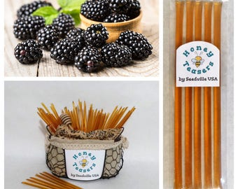 5 Pack BLACKBERRY Blossom HONEY TEASERS Natural Honey Snack Sticks Honeystix Straws