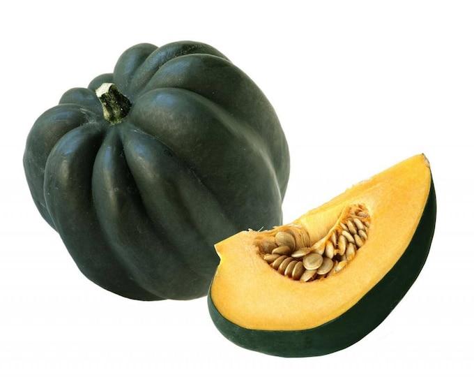 50 TABLE KING Acorn SQUASH Winter or Summer Cucurbita Maxima Vegetable Seeds