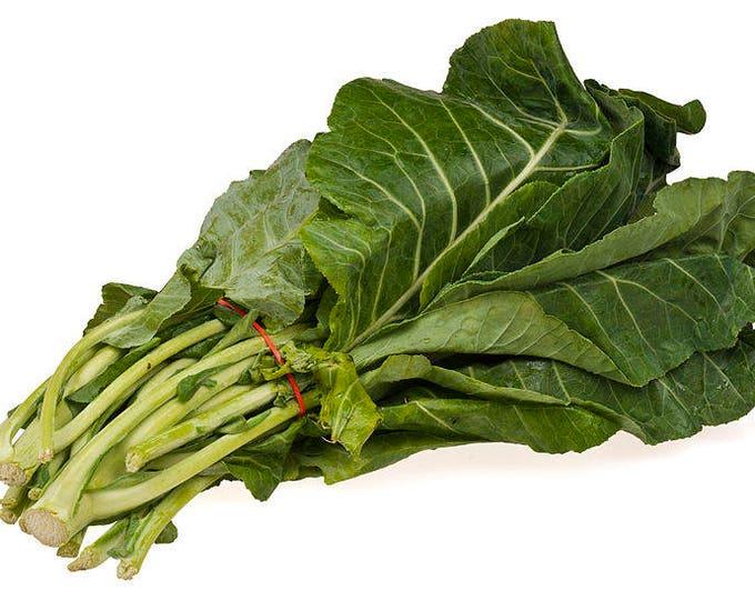 1000 PREMIER KALE Early Hanover Brassica Oleracea Greens Vegetable Seeds *CombSH