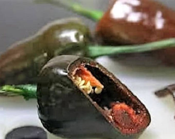 40 MULATO ISLENO PEPPER Brown Mildly Hot Ancho Poblano Capsicum Vegetable Seeds