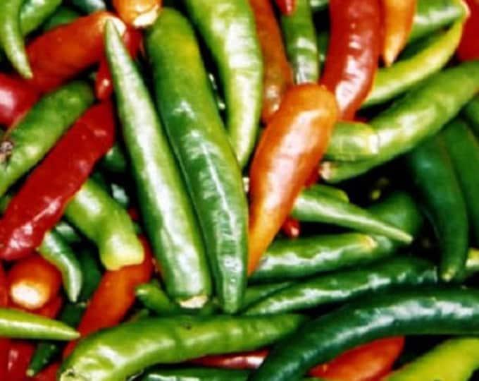 300 ANAHEIM CHILI PEPPER (New Mexico Chili Pepper) Capsicum Annuum Vegetable Seeds