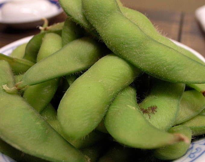 20 BUTTERBEANS SOYBEAN - The Edamame Bean Green Glycine Max Vegetable Seeds