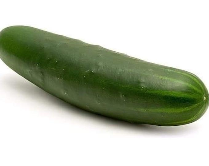 100 LONG Green IMPROVED CUCUMBER Slicing Cucumis Sativus Fruit Vegetable Seeds