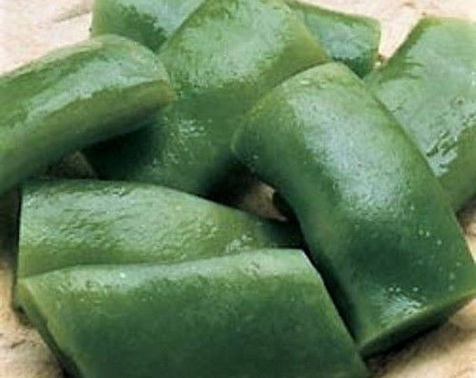 50 ROMA Italian GREEN BEAN Phaseolus Vulgaris Vegetable Seeds