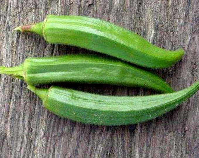300 CLEMSON Spineless GREEN OKRA Abelmoscgus Esculentus Vegetable Seeds