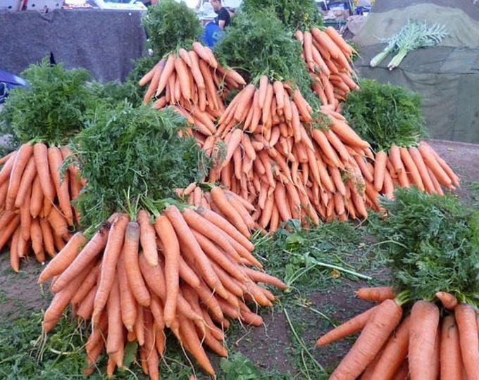 1500 TENDERSWEET CARROT Deep Orange Red Daucus Carota Vegetable Seeds