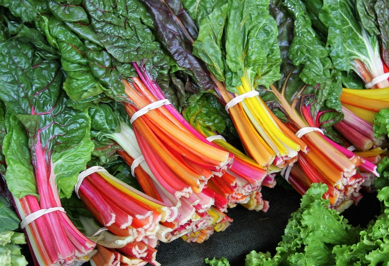 150 RAINBOW Mix SWISS CHARD Mixed Colors Beta Vulgaris image 0