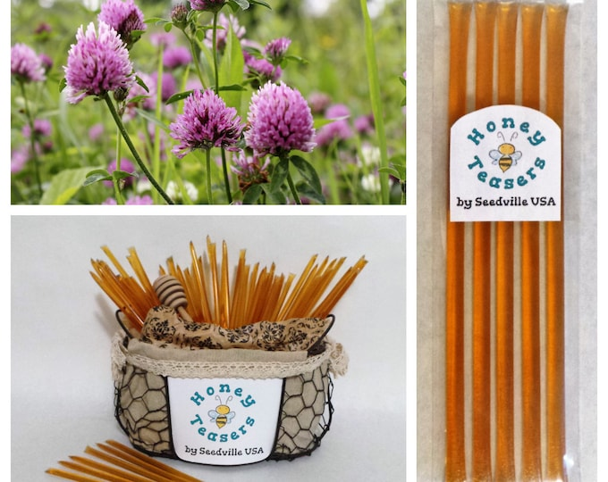 5 Pack CLOVER Blossom HONEY TEASERS Natural Honey Snack Sticks Honeystix Straws