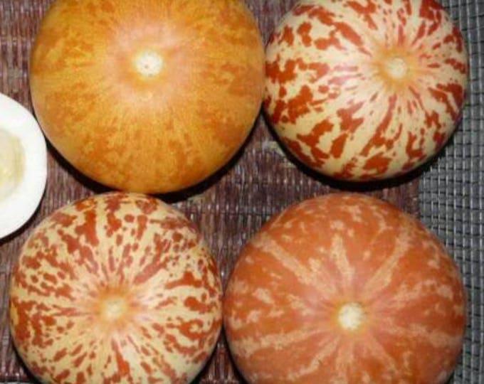 15 TIGGER / TIGER MELON Edible Muskmelon & Ornamental Vine Cucumis Melo Seeds