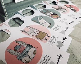 Pack of 6 - Woodland Rabbit Design - Wardrobe or Closet Dividers for Nursery and Baby