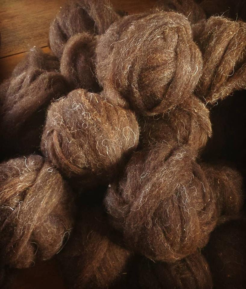 Roving ~ Ouessant Heritage Breed