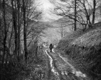 The village at the end of the path - Photo, fine art print