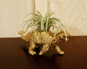 Golden Dinosaur Planter, Ankylosaurus