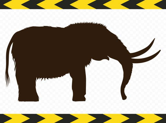 . Mammoth head Cut files for Cricut eps, svg, pdf, png, dxf, jpeg Clip Art silhouettes