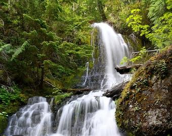 Verdant Falls, Waterfall Photo, Mount Rainier National Park, Landscape Photography, Nature Print, Fine Art Photography