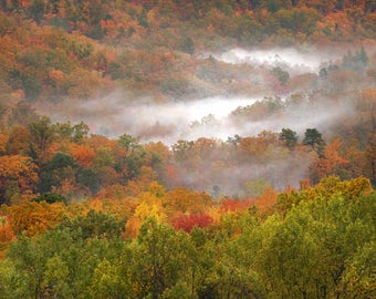 "Fall Color, Forest Photo, Fog, Great Smoky Mountains, Landscape Photography, Nature Print, ""Valley of the Mists"", Fine Art Photography"