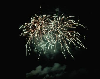 "Fireworks Photo, 4th of July, Art Print, ""Fingers of Fire"", Fine Art Photography, Long Exposure Photography, Celebration, Freedom Festival"