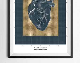 Anatomical Heart | 24ct Gold Leaf | Hand Made Print | Large Wall Art | Limited Edition | Architectural Print