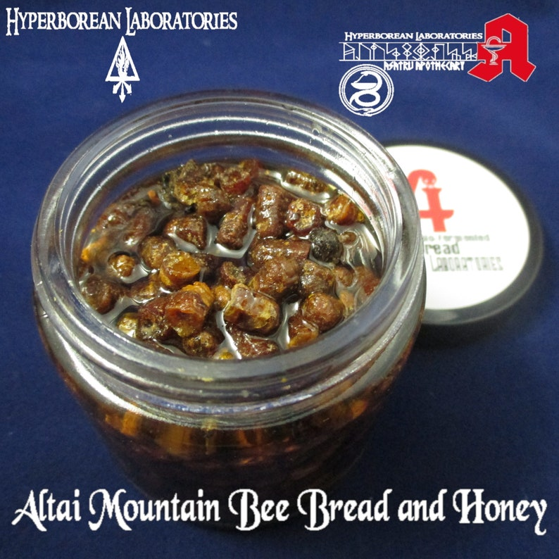 WIld Altai High Mountain Bee Bread and Honey (4oz ) digestive, superfood,  nutrient dense, bioactive, fermented food, living foods, fasting