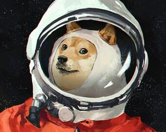 dog space helmet etsy
