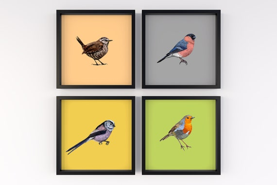 Set of Four British Birds Square Prints - Hand Drawn Illustrations Eco Friendly Prints . Bird Lovers Plastic Free Gift.