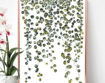 Botanical hanging plant digital print, Watercolor Pearl plant wall art, Instant download printable house plant print