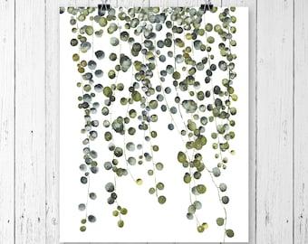 Pearl plant print, Botanical print set, Succulent print, Wall art, Wall decor, Botanical print, Botanical art, prints, Botanical wall art