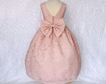 c1ed8376dfd Fancy Country Blush Pink French Lace Gown Bow Flower Girl Junior Holiday  Spring Rustic Bridesmaid Ceremony Birthday Newborn Summer Recital