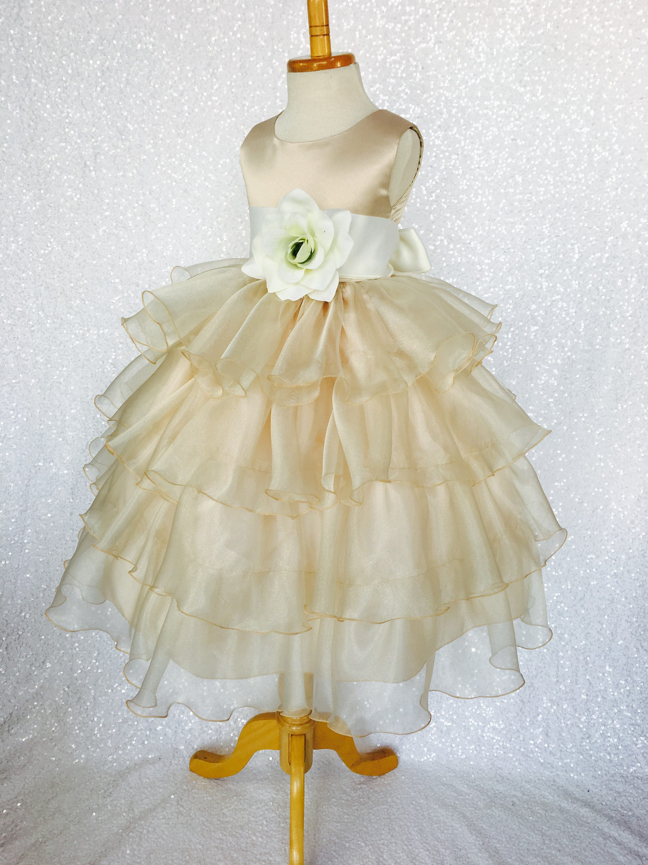 e776aebfe40 Organza Ruffle Champagne Dress Ivory Satin Sash Flower Girl