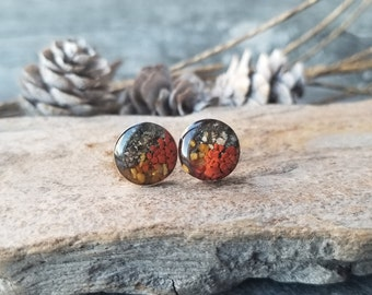 Skagway, Alaska, Sterling Silver Stud Earring