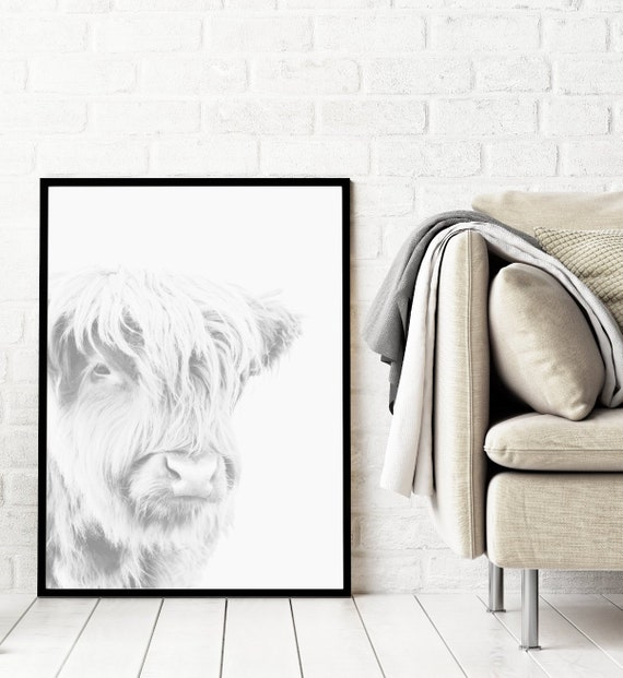Highland Cow Print Animal Print Photography Prints Downloadable Prints Animal Printable Wall Art Large Wall Art Prints Digital Download