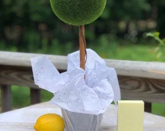 Lemony fresh soap bar